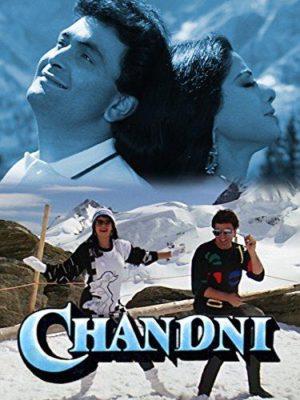 Chandni (1989) Hindi