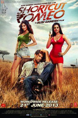 Shortcut Romeo (2013) Hindi