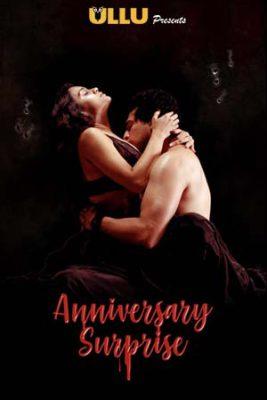The Anniversary Surprise (2019) Hindi Season 1 Complete