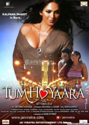 Tum Ho Yaara (2011) Hindi