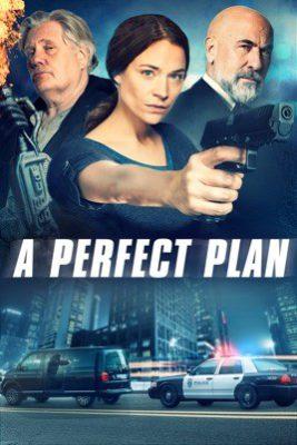 A Perfect Plan (2020) Hindi Dubbed