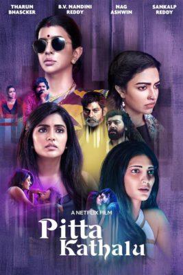 Pitta Kathalu (2021) Hindi Season 1 Complete