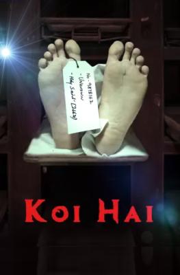 Koi Hai (2021) Hindi Season 1 Complete