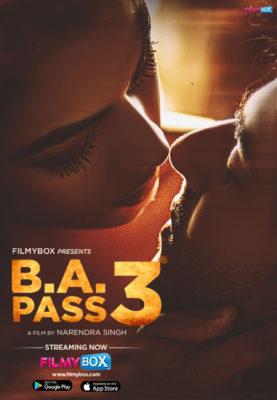 B.A. Pass 3 (2021) Hindi