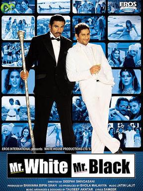 Mr. Black Mr. White (2008) Hindi